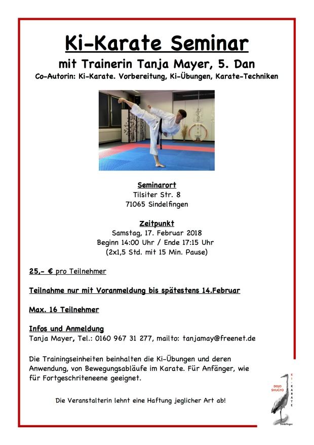 Ki-Karate Seminar 17.2.218